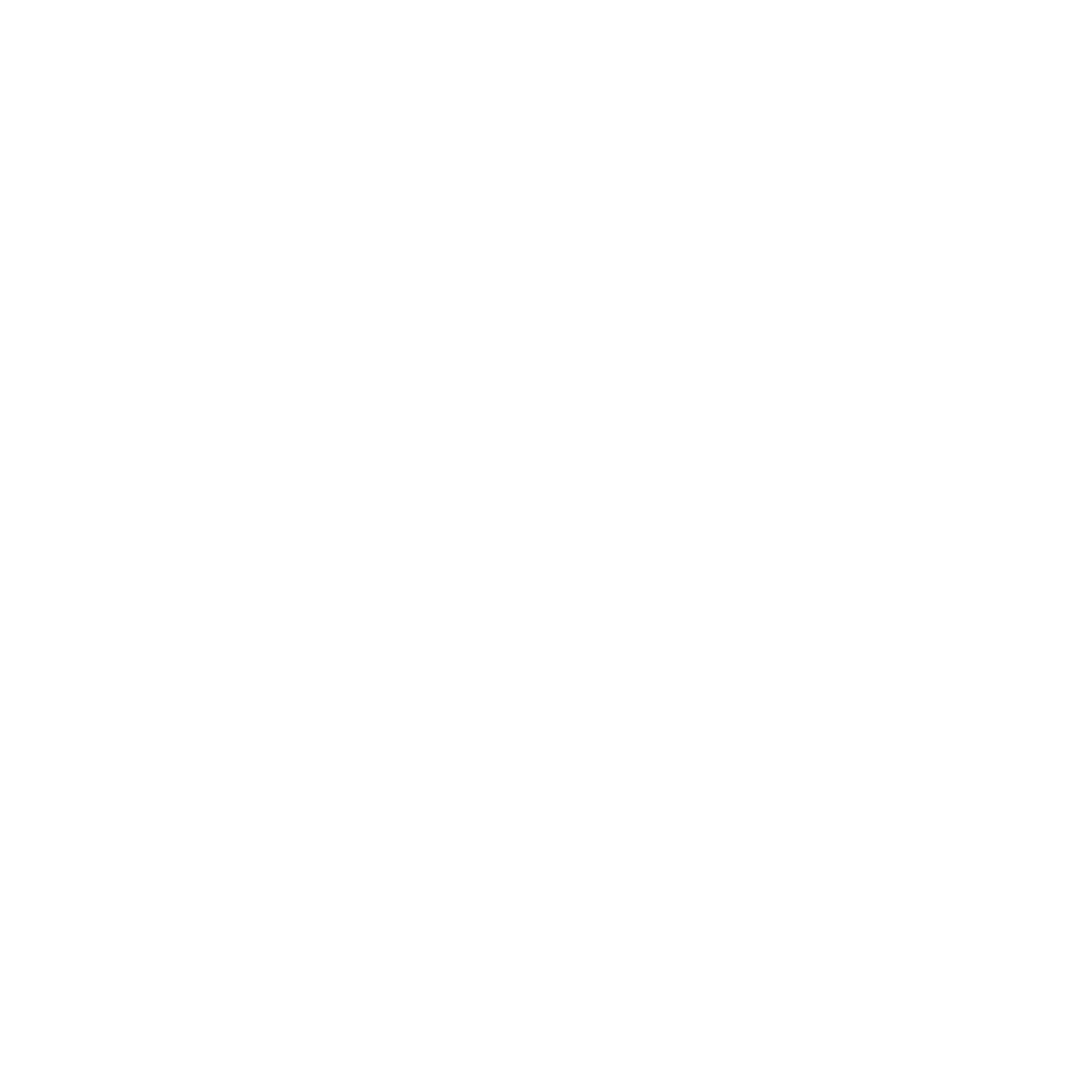 White logo for